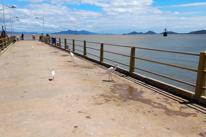 Florianópolis Beiramar Centro